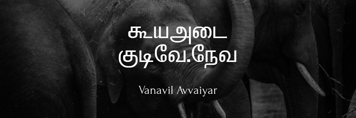 Vanavil Avvaiyar Font – Free Tamil Download and Installation